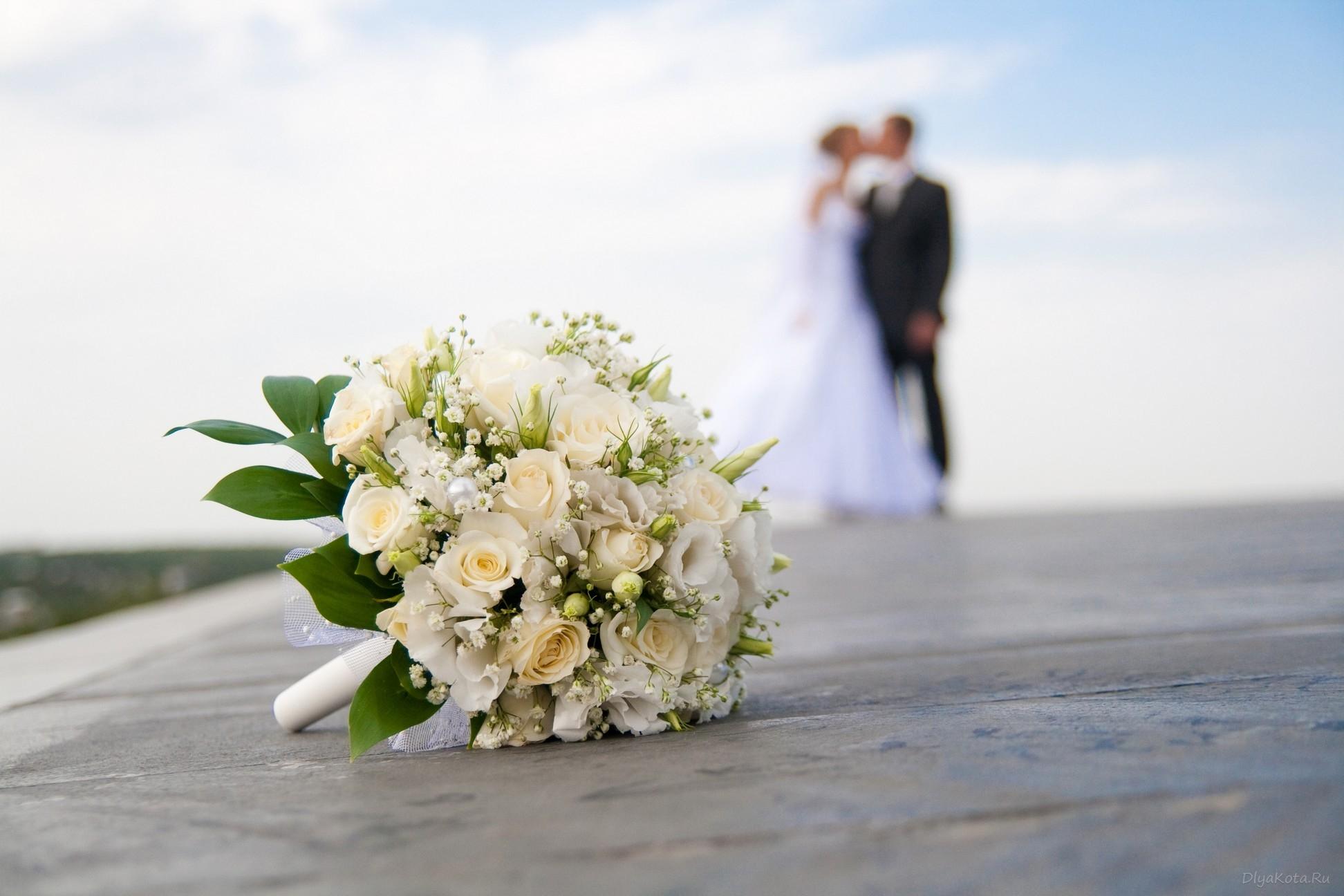 В столице теперь тоже можно пожениться в течение суток