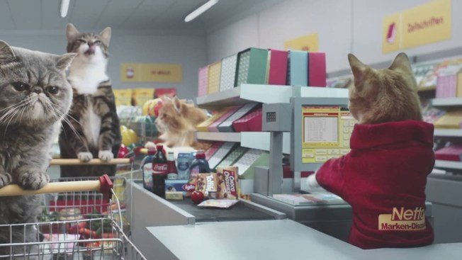 Животные стали героями рекламы