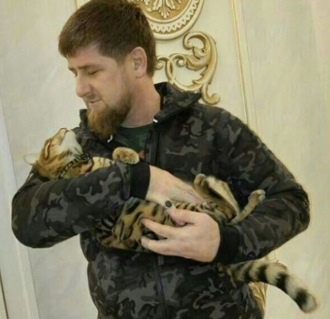 Рамзан Кадыров уверен, что его кот ушел решать сердечные дела